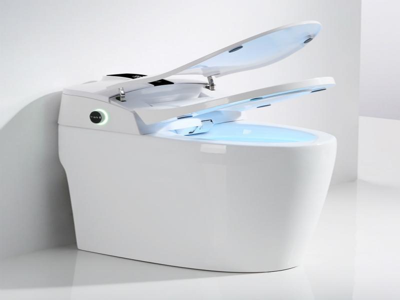Proveedor CBM-I50 para Sensor Automático Flushing Alojamiento inteligente inteligente Inteligente