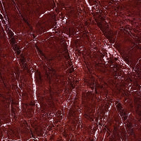 Red Rosso Levanto Polished Glazed Tile 800x800