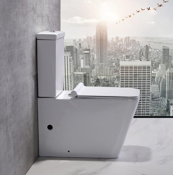 Ceramic Bathroom Floor Mounded Modern Dual-Flush Toilet