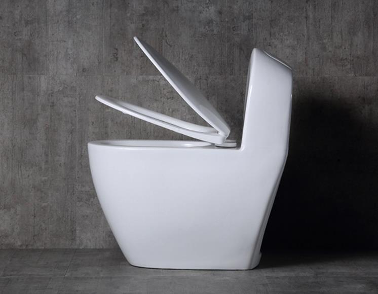 Siphoinc One Piece Bidet nice design