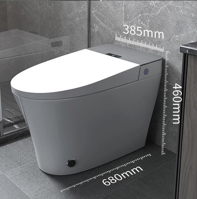 Intelligent smart wc toilet 110V/220V s-trap 2021 electronic electric bidet siphonic sensor flush