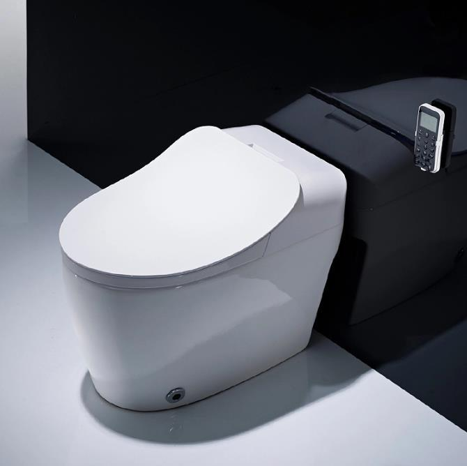 CBM  IntellIgent WC Toilet Electric One Piece Bidet Ceramic Sanitary Ware