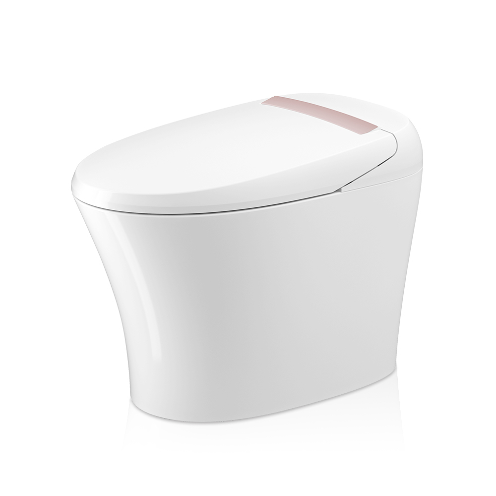 High Quality instant Water Heating Smart Sanitary Ware Toilet